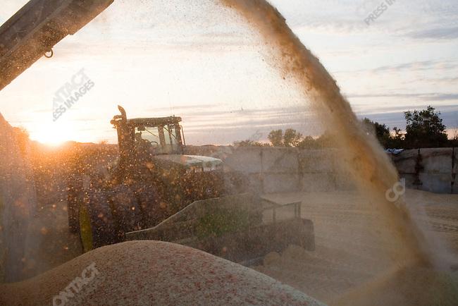 The Circle E farm, owned by Craig Ebberson, is located near Belden, Nebraska. Nebraska, September 13, 2007.