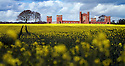 2012_04_19_VERNONS_FOLLY_OILSEED_RAPE