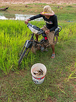 Farmer, fisherman on his old bike with his catch of fish from the rice-fields on the road between Siem Reap and Battambang the agriculture region of Cambodia
