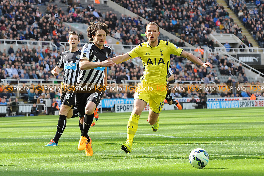 Harry Kane of Tottenham Hotspur battles with Fabricio Coloccini of Newcastle United - Newcastle United vs Tottenham Hotspur - Barclays Premier League Football at St James Park, Newcastle upon Tyne - 19/04/15 - MANDATORY CREDIT: Steven White/TGSPHOTO - Self billing applies where appropriate - contact@tgsphoto.co.uk - NO UNPAID USE