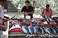 The fish sell quickly as buyers crowd around. (Photo by Matt Considine - Images of Asia Collection)