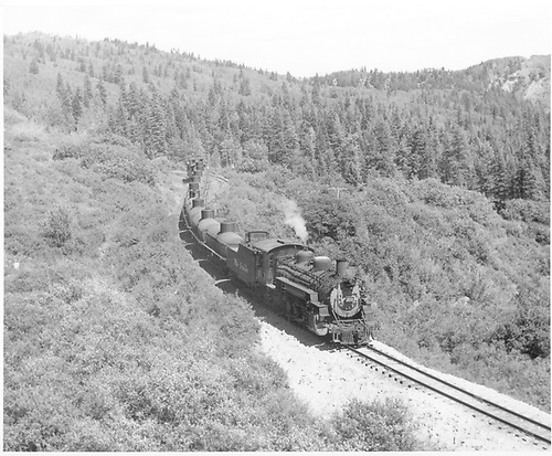 D&amp;RGW #483 with empty tank car train descending Cumbres west of Cresco - siding in background.<br /> D&amp;RGW  Cresco, CO  Taken by McMurtry, W. Larry - 6/1959