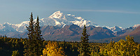 View of the south summit of Mt Denali, North America's tallest mountain, 20,320 ft.