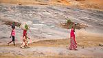 India, Rajasthan, firewood gatherers