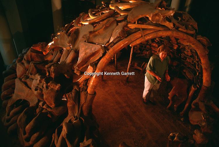 Mammoth bone and tusk hut reconstruction, Mezhirich, Ukraine