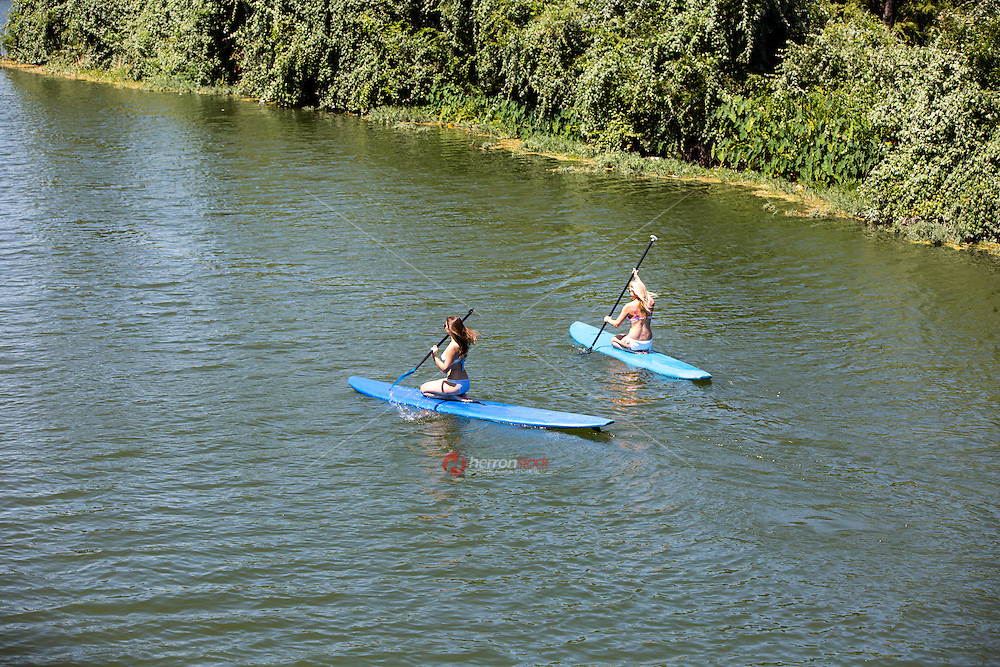 Two young female surfers in East Austin on SUP standup paddle boarding exploring Lady Bird Lake's hidden coves.