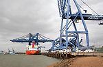 Crane transporter ship Port of Felixstowe, Suffolk, England, UK damaged crane from collision 2008