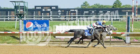 Butch Cassidy LZP winning at Delaware Park on 7/2/12