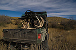 Shooting a desert mule deer is a lot more fun when the job of getting back to camp is done with a Yamaha side-by-side.