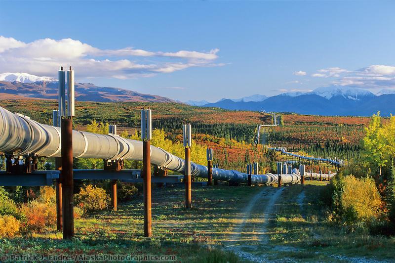 The Trans Alaska oil pipeline stretches across the autumn tundra through the Alaska mountain range, interior, Alaska