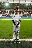 Swansea City Mascots during the Barclays Premier League match between Swansea City and Southampton  played at the Liberty Stadium, Swansea  on February 13th 2016