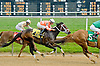 Falcon's Flight 1st time by at Delaware Park on 5/16/12