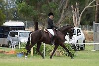 Champion Rider 21-U30