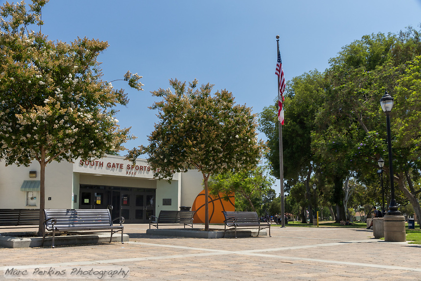 The South Gate Sports Center seen from the side, emphasizing the flowering trees and curving pathway in front of it.  The flag, benches, and lighting are all visible.