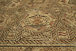 Israel, Lod, a 1,700 Year Old mosaic that was the courtyard pavement of the magnificent villa that had the famous Lod Mosaic in its living room