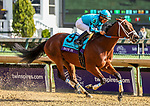 November 3, 2018: Roy H #9, ridden by Paco Lopez, wins the Twinspires Breeders' Cup Sprint on Breeders' Cup World Championship Saturday at Churchill Downs on November 3, 2018 in Louisville, Kentucky. Candice Chavez/Eclipse Sportswire/CSM