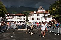 Europe/France/Aquitaine/64/Pyrénées-Atlantiques/Pays-Basque/Sare: Lors du  Concours De Pottok, le village et l'église  Saint-Martin