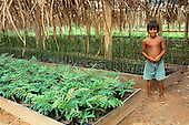 Juruena, Amazon, Brazil. Young boy at a nursery for re-planting rainforest trees.