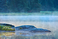 Rocks in Isabel Lake in fog<br />