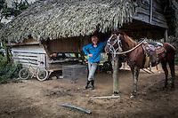 Tobaksplantage i Vinãles i det vestlige Cuba. Foto: Jens Panduro.