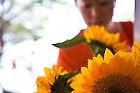 Young Asian woman admiring the sunflowers at a Chinatown flower shop