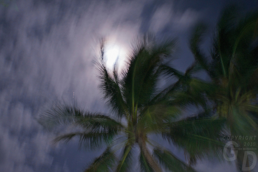 Full moon and palm trees Boracay island, Philippines