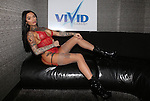 Vivid Cabaret New York Valentine's Week