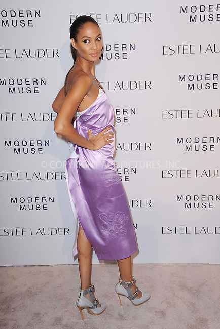 WWW.ACEPIXS.COM<br /> September 12, 2013...New York City<br /> <br /> Joan Smalls attending the Estee Lauder 'Modern Muse' Fragrance Launch Party at the Guggenheim Museum on September 12, 2013 in New York City.<br /> <br /> Please byline: Kristin Callahan/Ace Pictures<br /> <br /> Ace Pictures, Inc: ..tel: (212) 243 8787 or (646) 769 0430..e-mail: info@acepixs.com..web: http://www.acepixs.com