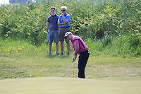 Paul O'Hanlon (Carton House) chips in for a birdie on the 9th green during Round 4 of the 2016 East of Ireland Amateur Open Championship sponsored by City North Hotel at Co. Louth Golf club in Baltray on Monday 6th June 2016.<br /> Photo by: Golffile   Thos Caffrey