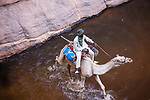Chad (Tchad), North Africa, Sahara, Ennedi, young Chad man riding camel across water