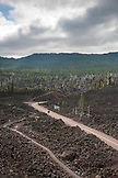 USA, Oregon, Oregon Cascades, view from the top of the Dee Wright Observatory in the middle of an old lava flow at the top of the McKenzie Pass on Hwy 242, the Wilamette National Forest