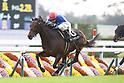 Horse Racing: Kyoto Racecourse
