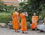 Buddhist monks, taking pictures.