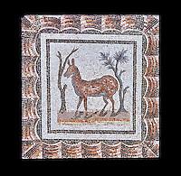 3rd century AD Roman mosaic depiction of two deer between two shrubs. Thysdrus (El Jem), Tunisia.  The Bardo Museum, Tunis, Tunisia. Black background