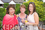 Marie Porter, Hannah O'Regan and Mags Quillinan at a Garden party in aid of the Hospice at Ballygarry house hotel on Sunday were
