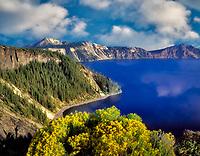 M00406M.tiff Rabbit Brush in bloom and Crater Lake, Oregon