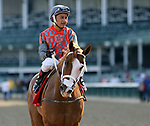 June 29, 2019 : Phantom Boss (#1, Rafael Bejarano) wins the Bashford Manor Stakes at Churchill Downs, Louisville, Kentucky. Trainer Jorge Periban, owners Bada Beng Racing LLC (Rake Benson), Tom Beckerle, Terry C. Lovingier, Amanda Navarro. By Shackleford x Bossy Belle (Street Boss)  Mary M. Meek/ESW/CSM