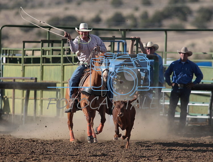 A member of the Last Minute Cattle team competes in the calf-roping event at the Minden Ranch Rodeo action Saturday, July 21, 2012..Photo by Cathleen Allison