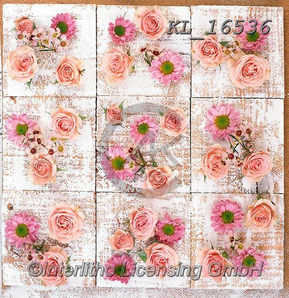 Interlitho-Alberto, FLOWERS, BLUMEN, FLORES, photos+++++,flowers,KL16536,#f#, EVERYDAY