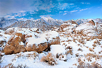 711700272 winter sunrise over snow covered granite boulders and desert plants with mount whitney mount russell and lone pine peak the snow-covered eastern sierras in the background seen from the alabama hills blm protected lands in kern county california
