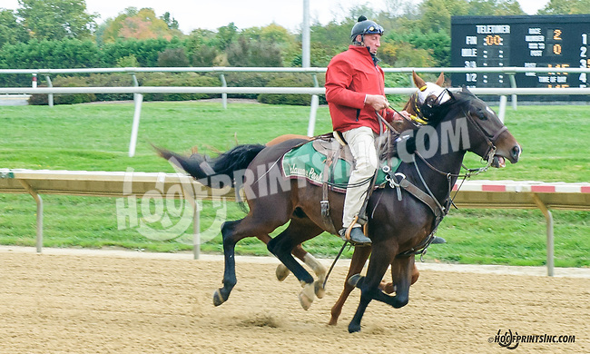 Lance catching a loose horse at Delaware Park on 10/17/15