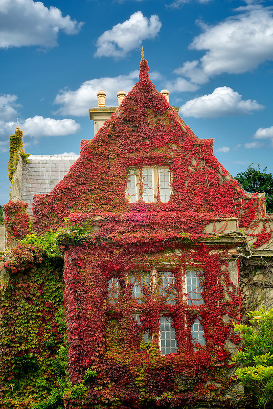 Muckross House and ivy covered walls. Killarney National Park, Ireland