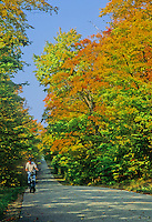A senior bicycles up Greene Road in Door County, Wisconsin through a tunnel of fall colors