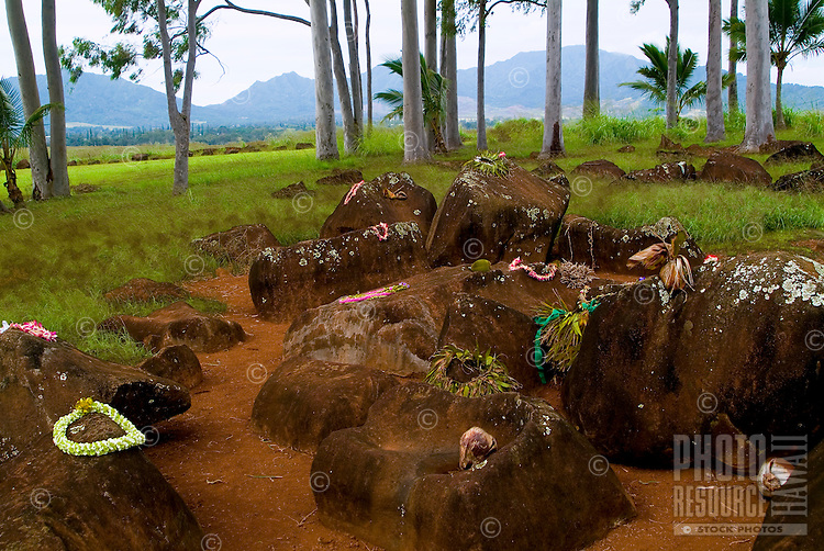 Historic Kukaniloko State Monument (Royal Birthing Stones) in Wahiawa, Oahu. Several stones are adorned with lei offerings. Waianae Mountains in background.