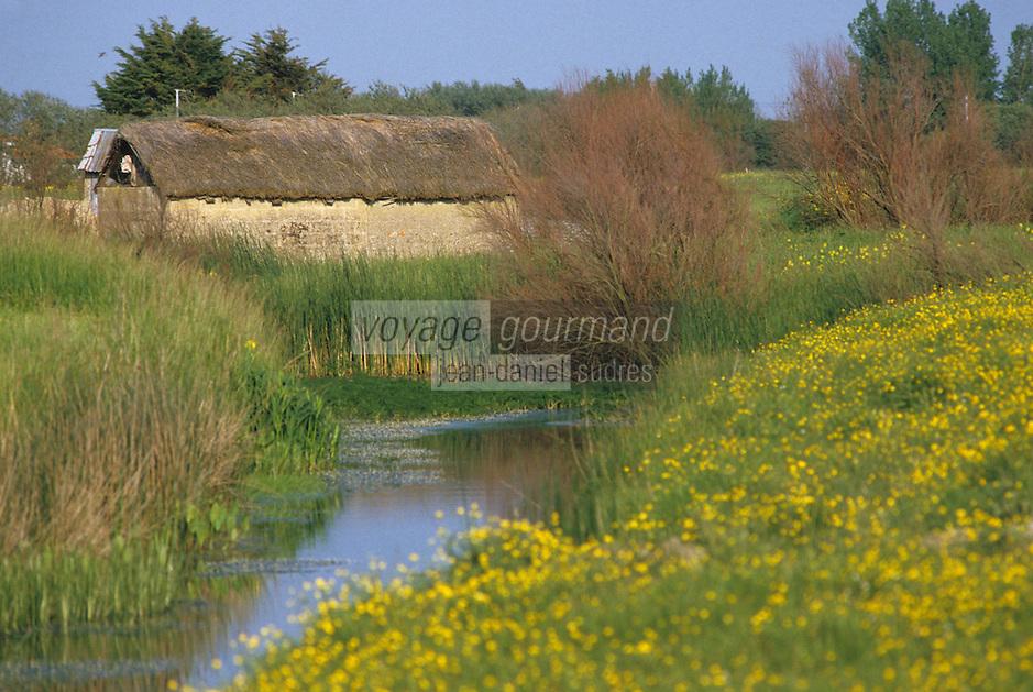 Europe/France/Pays de la Loire/85/Vendée/Marais breton-vendéen/Env de Saint-Jean-de-Monts: Bourrine