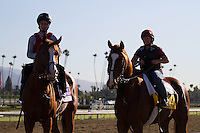 Dullahan and Shakleford coming off the track for trainer Dale Romans at Santa Anita Park in Arcadia California