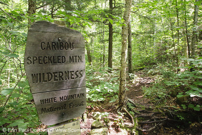 Caribou - Speckled Mountain Wilderness sign along Mud Brook Trail in the White Mountain National Forest of Maine. Mud Brook Trail travels to the summit of Caribou Mountain.