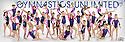 2013 - 2014 Gym Unlimited Gymnastics