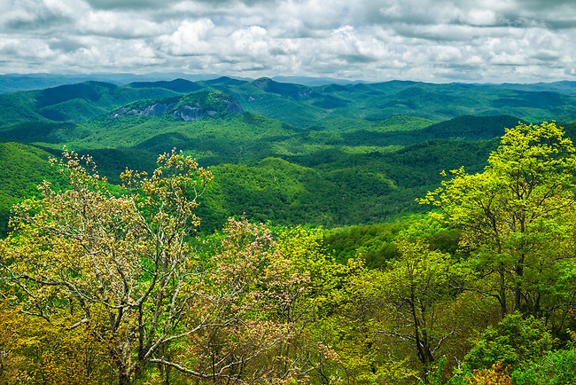 Spring colors and Looking Glass Rock, Blue Ridge Parkway