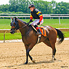 On the List with Sara Vermeersch aboard winning at Delaware Park on 6/13/17